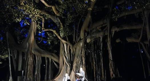 orto botanico di notte